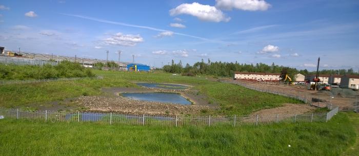 Toryglen SuDS pond